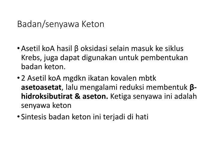 Badan/senyawa Keton