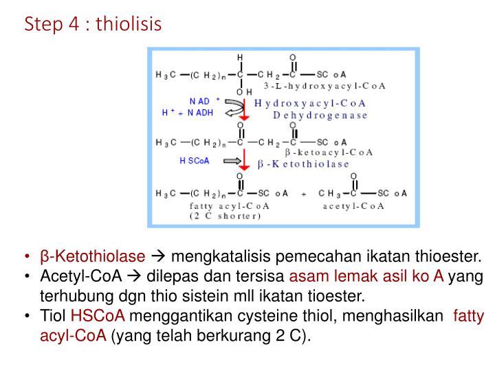 Step 4 : thiolisis