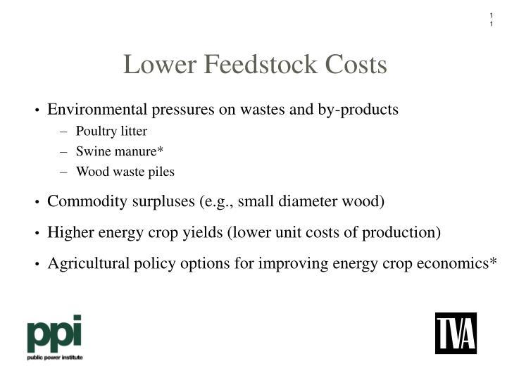 Lower Feedstock Costs