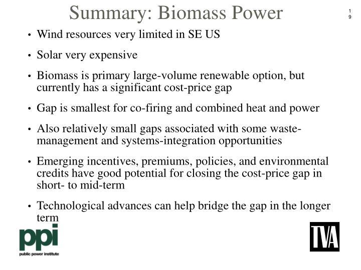 Summary: Biomass Power