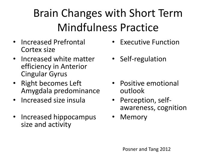 Brain Changes with Short Term Mindfulness Practice