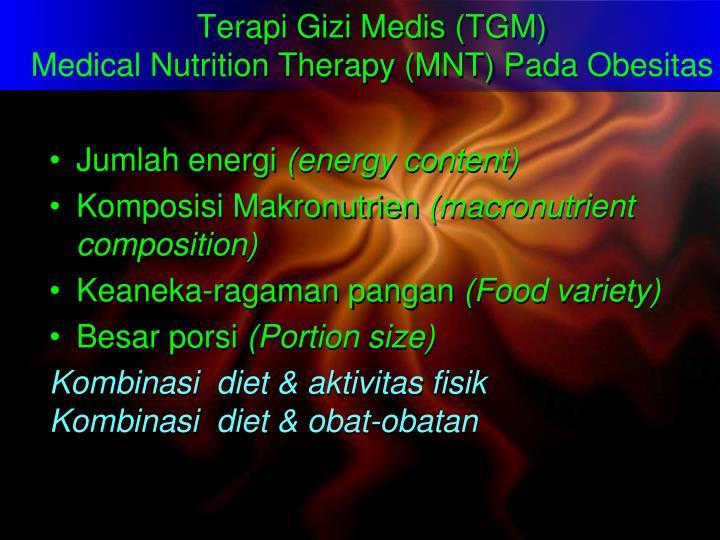 Terapi Gizi Medis (TGM)