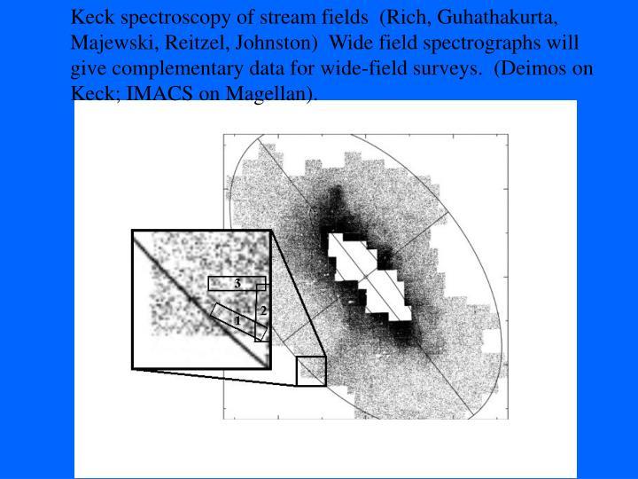 Keck spectroscopy of stream fields  (Rich, Guhathakurta,