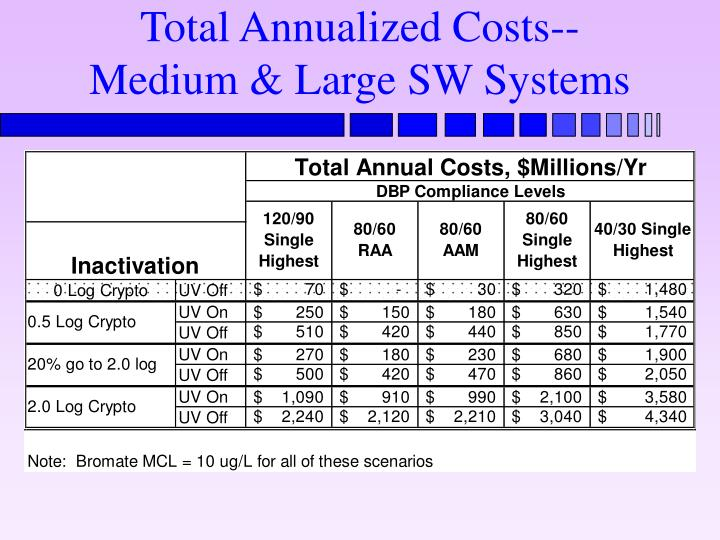 Total Annualized Costs-- Medium & Large SW Systems