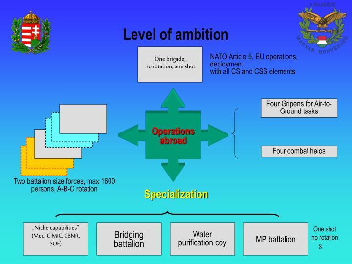 Level of ambition