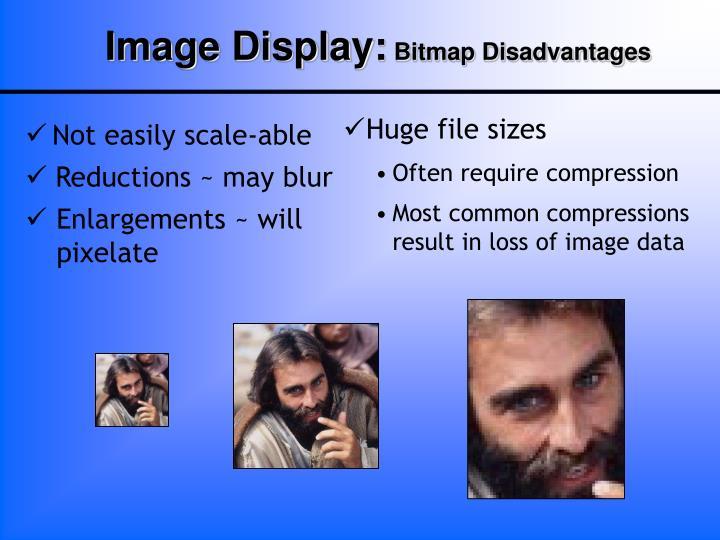 Image Display: