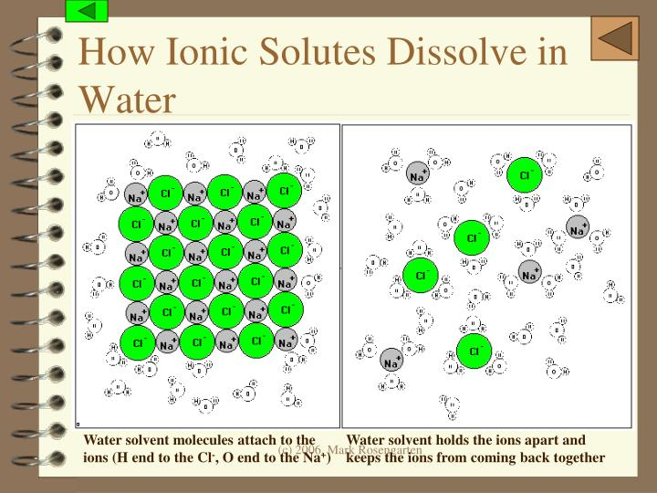 How Ionic Solutes Dissolve in Water