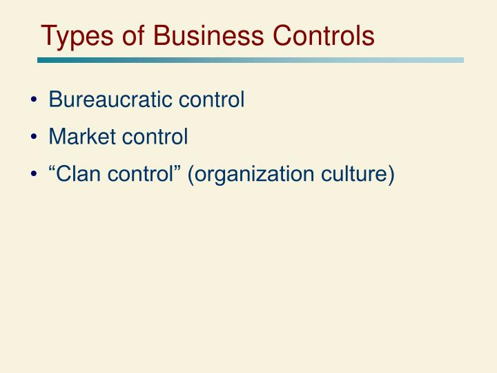 Types of Business Controls