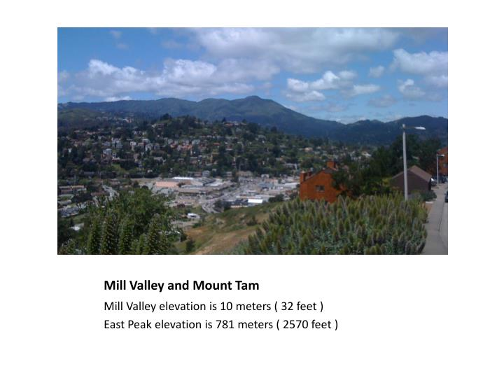 Mill valley and mount tam