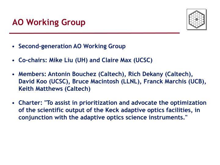 AO Working Group