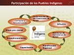 participaci n de los pueblos ind genas
