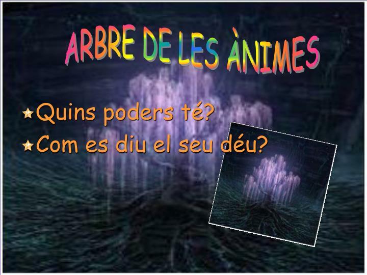 ARBRE DE LES ÀNIMES