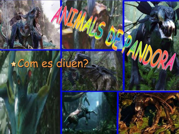 ANIMALS DE PANDORA
