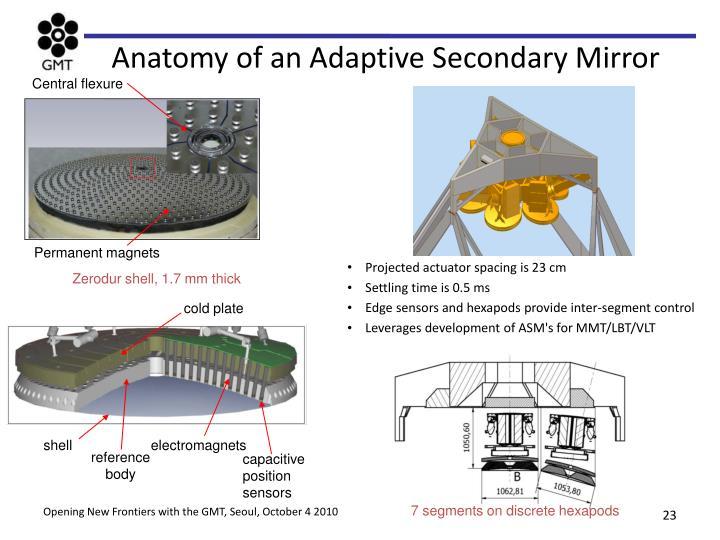 Anatomy of an Adaptive Secondary Mirror