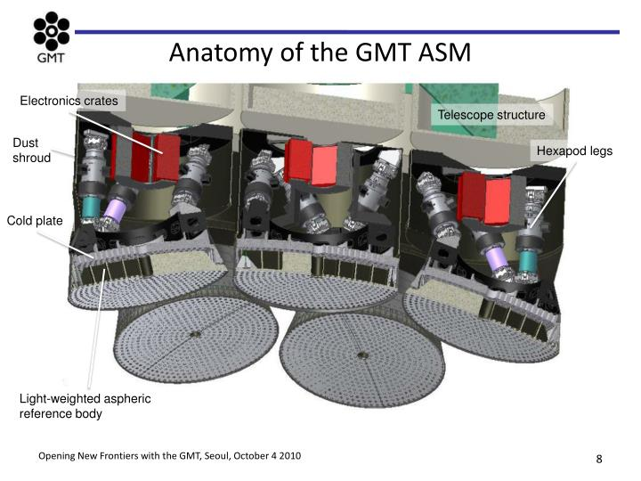 Anatomy of the GMT ASM