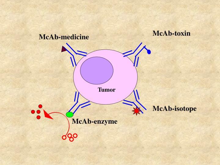 McAb-toxin