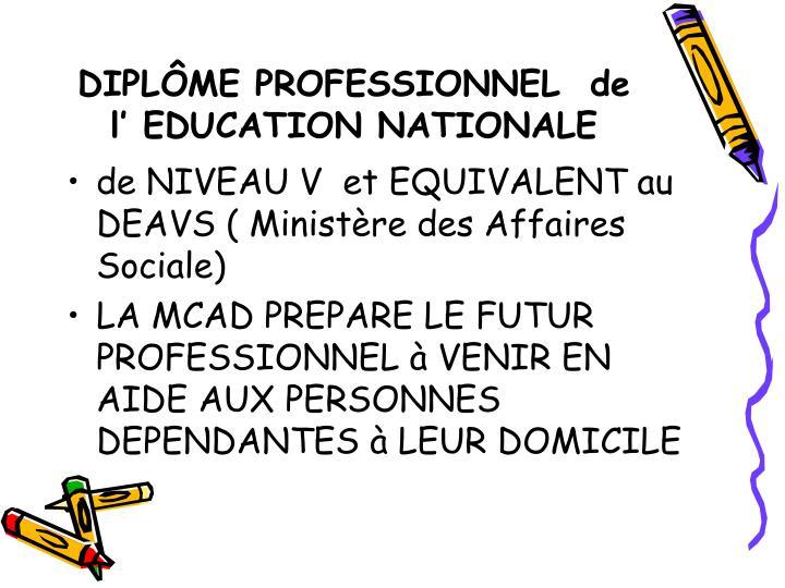 DIPLÔME PROFESSIONNEL  de l' EDUCATION NATIONALE