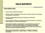 cele raportu