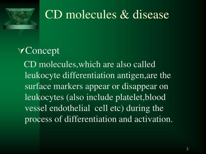 CD molecules & disease