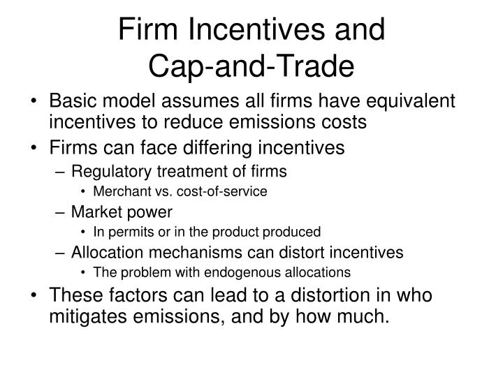 Firm Incentives and