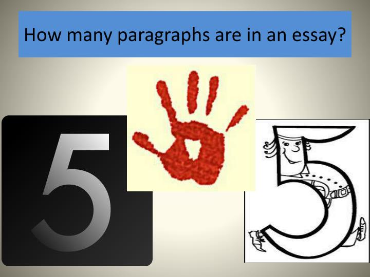 How many paragraphs are in an essay?