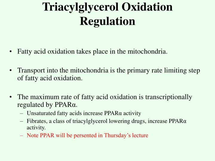 Triacylglycerol Oxidation
