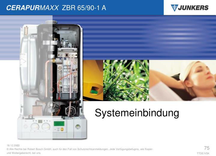Systemeinbindung