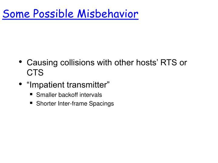 Some Possible Misbehavior