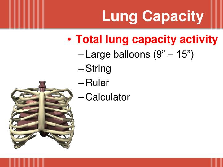 Lung Capacity