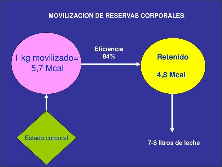 MOVILIZACION DE RESERVAS CORPORALES