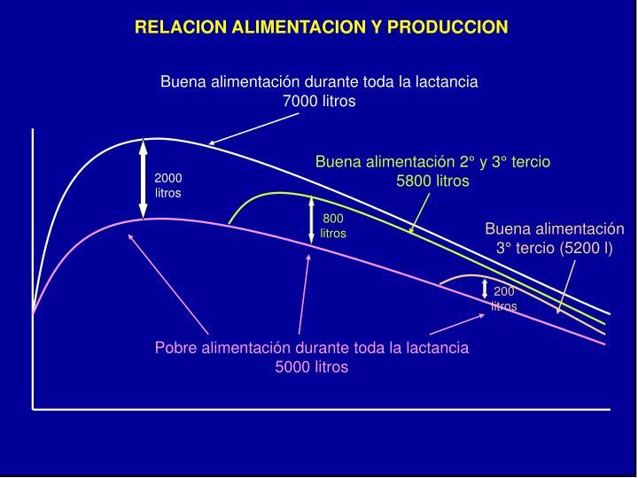 RELACION ALIMENTACION Y PRODUCCION