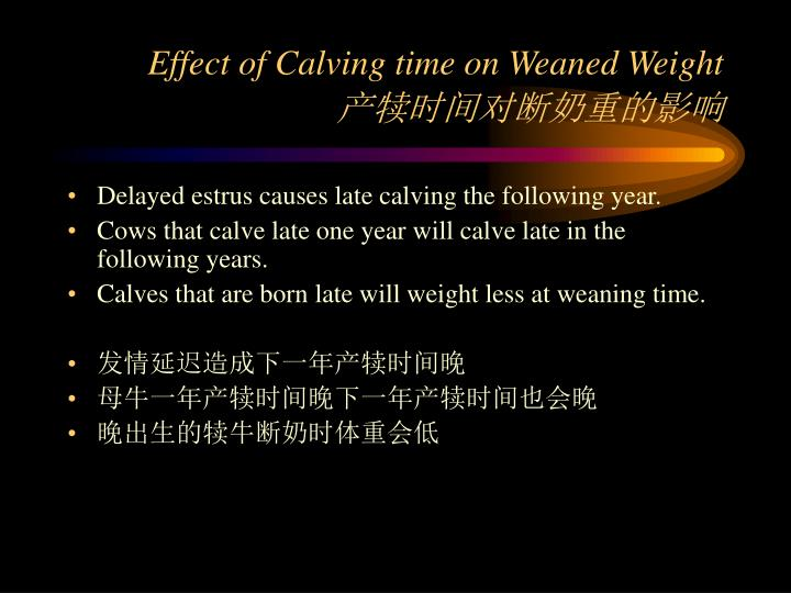 Effect of Calving time on Weaned Weight