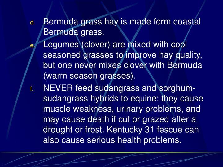 Bermuda grass hay is made form coastal Bermuda grass.