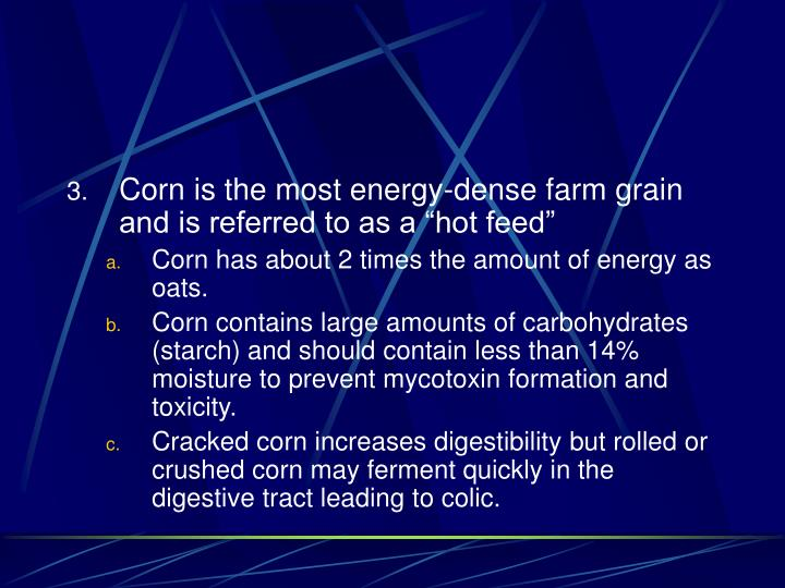 """Corn is the most energy-dense farm grain and is referred to as a """"hot feed"""""""