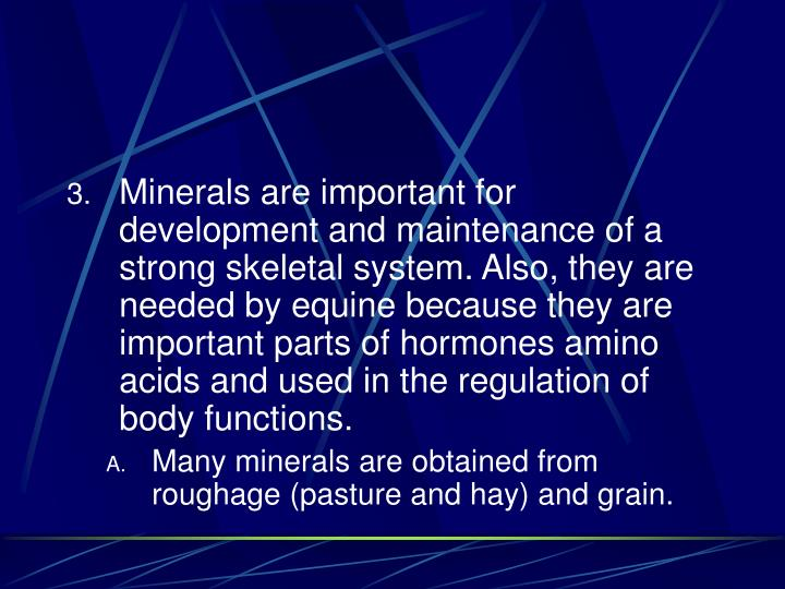 Minerals are important for development and maintenance of a strong skeletal system. Also, they are needed by equine because they are important parts of hormones amino acids and used in the regulation of body functions.
