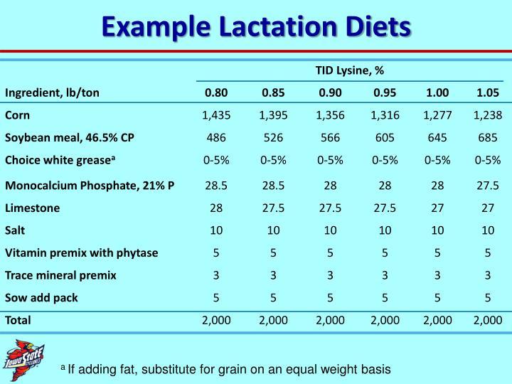 Example Lactation Diets