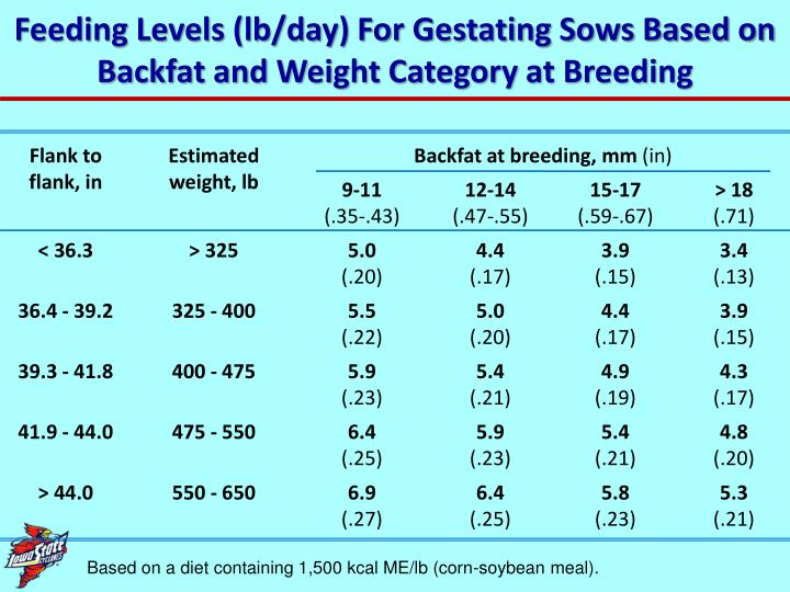 Feeding Levels (lb/day) For Gestating Sows Based on