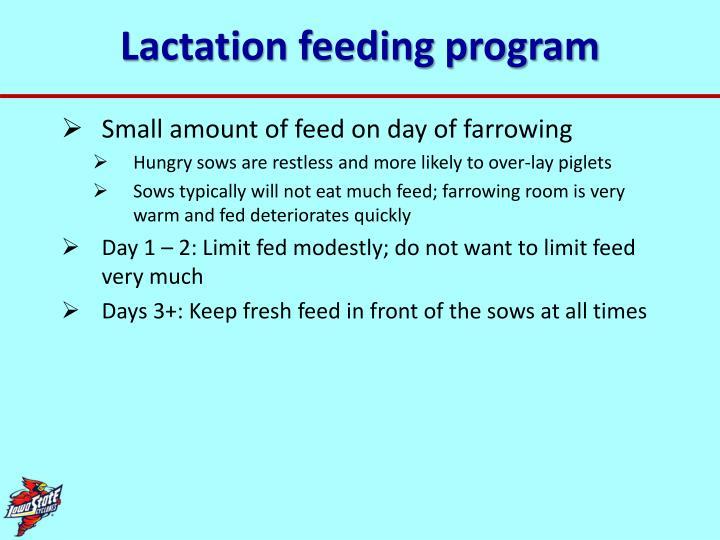 Lactation feeding program