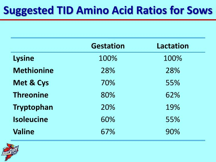 Suggested TID Amino Acid Ratios for Sows