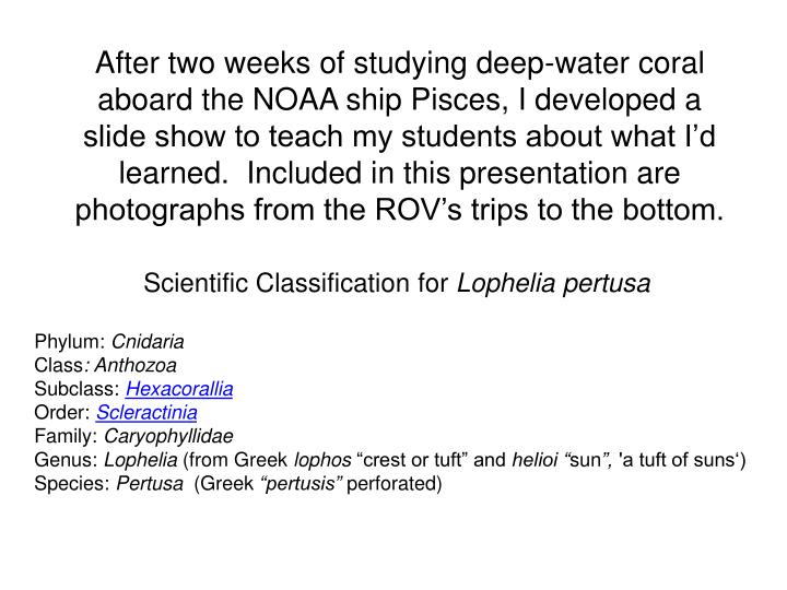 After two weeks of studying deep-water coral aboard the NOAA ship Pisces, I developed a slide show to teach my students about what I'd learned.  Included in this presentation are photographs from the ROV's trips to the bottom.