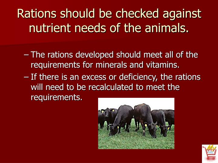 Rations should be checked against nutrient needs of the animals.