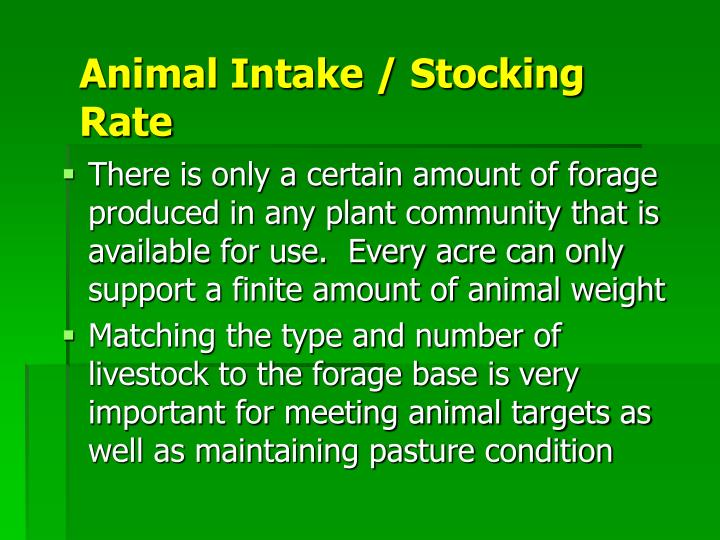 Animal Intake / Stocking Rate