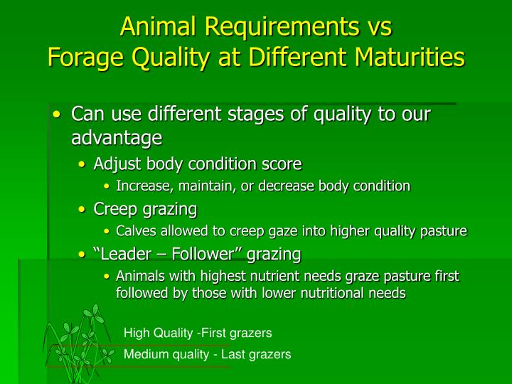 Animal Requirements vs