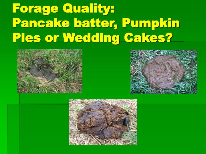 Forage Quality: