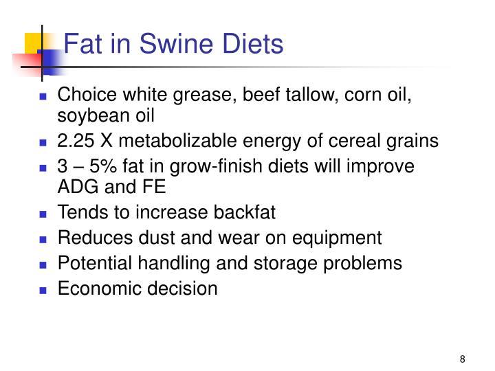 Fat in Swine Diets