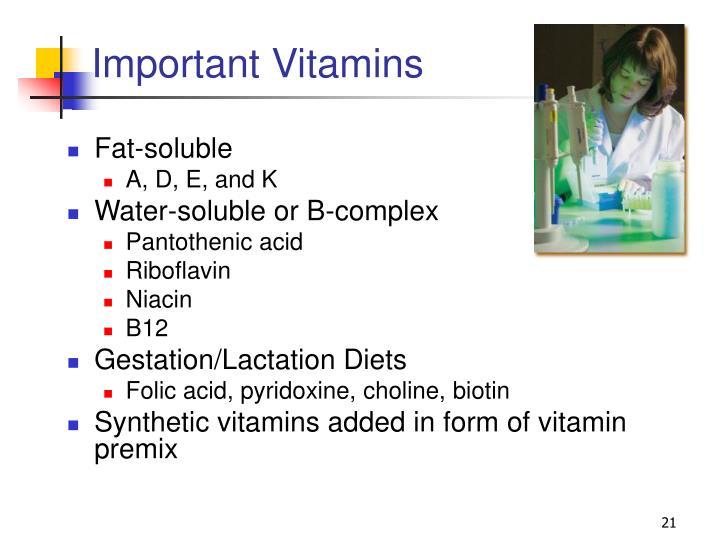Important Vitamins