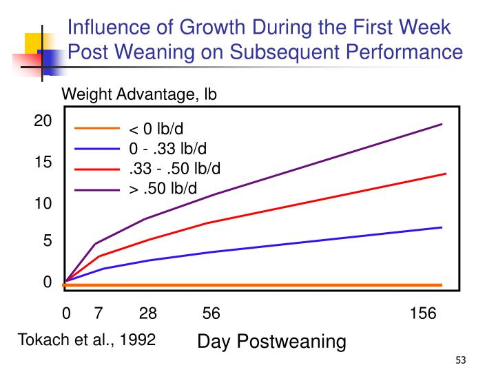 Influence of Growth During the First Week Post Weaning on Subsequent Performance