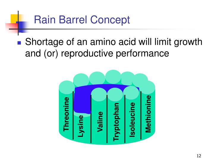 Rain Barrel Concept