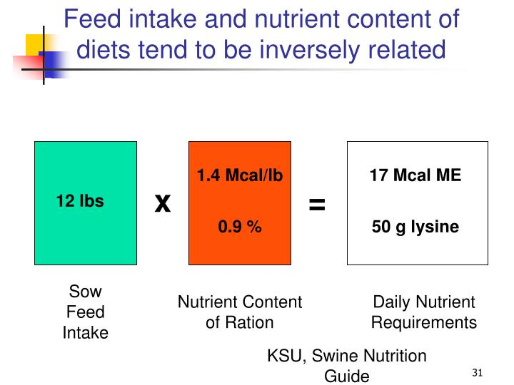 Feed intake and nutrient content of