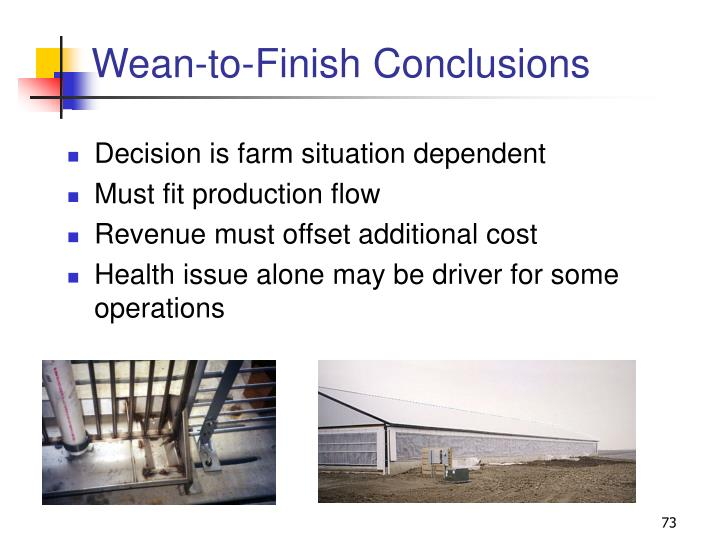 Wean-to-Finish Conclusions